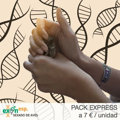 pack express